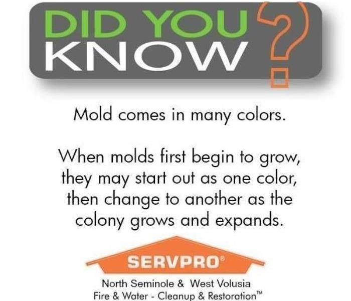 Mold Remediation Testing For Mold In Your Central Florida Home?