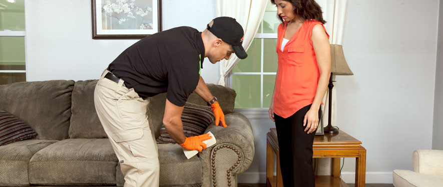 De Land, FL carpet upholstery cleaning