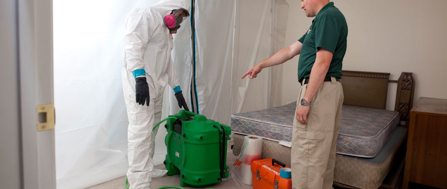 De Land, FL mold removal process